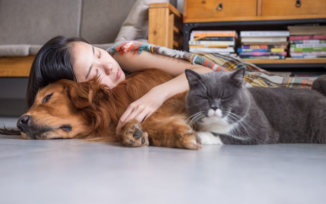 Owning A Pet Is Healthy