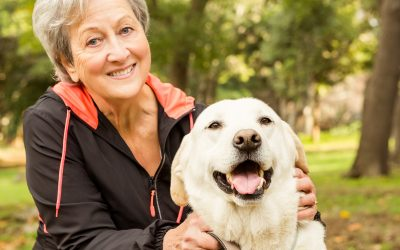 Best Dog Breeds for Senior Citizens