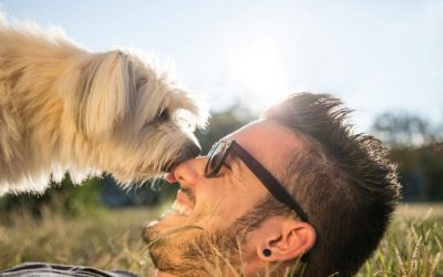 How Pets Are Helping Us Cope with the Pandemic
