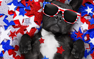 Keep Your Pets Safe On July 4th!
