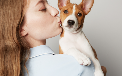 September is Responsible Dog Owner Month